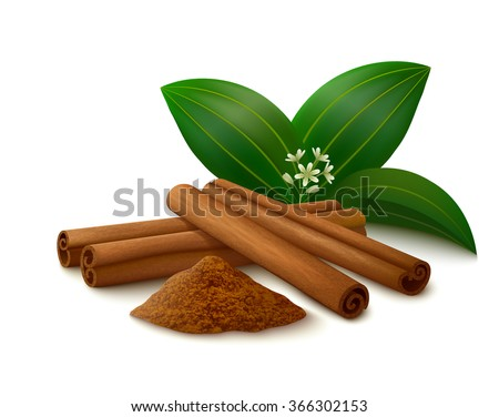 Cinnamon sticks, powder, leaves and flower with shadows isolated on white background. Vector illustration. Royalty-Free Stock Photo #366302153