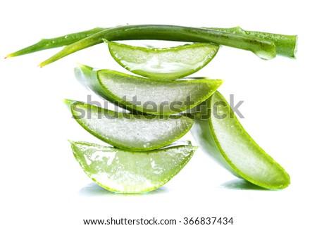 aloe vera slices on white background #366837434