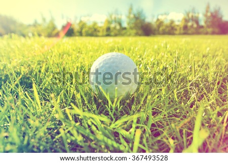 Golf game. Golf balls in grass. Instagram vintage picture.