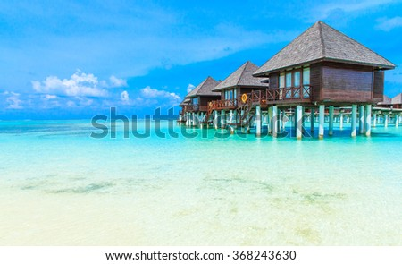 tropical beach in Maldives with few palm trees and blue lagoon #368243630