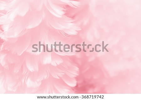 Fluffy mauve pink feather fashion design background - black and white tinted Valentine day fuzzy textured photograph - soft focus #368719742