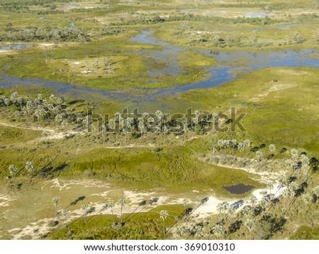 aerial view of the Okavango Delta in Botswana, Africa #369010310