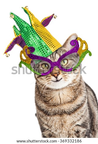 Funny photo of a happy cat wearing Mardi Gras mask and jester hat