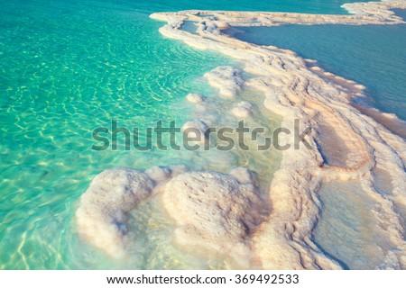 Texture of Dead sea. Salty sea shore #369492533