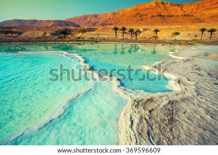 Dead sea salty shore. Wild nature. Tropical landscape. Summertime.  Royalty-Free Stock Photo #369596609