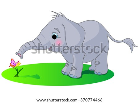 Cute baby elephant looks at the butterfly