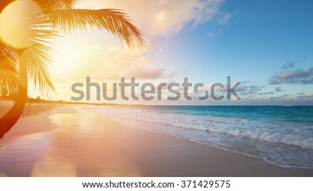Art Beautiful sunrise over the tropical beach Royalty-Free Stock Photo #371429575