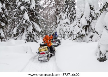 Two men and a woman stopped in the woods during a trip in the winter woods on snowmobiles.  #372716602