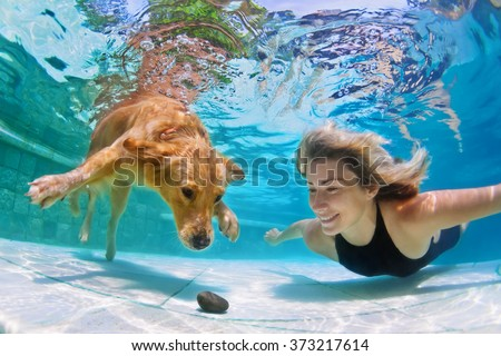 Smiley woman playing with fun and training golden retriever puppy in swimming pool - jump and dive underwater to retrieve stone. Active games with family pets and popular dog breeds like a companion. #373217614