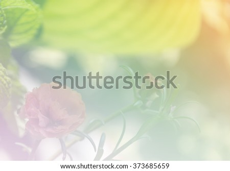 Soft blurred of flowers  in pastel tone for background. #373685659