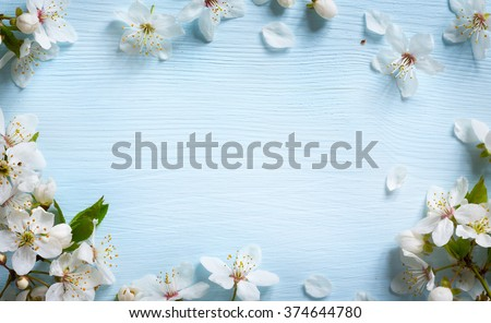 Spring border background with white blossom Royalty-Free Stock Photo #374644780