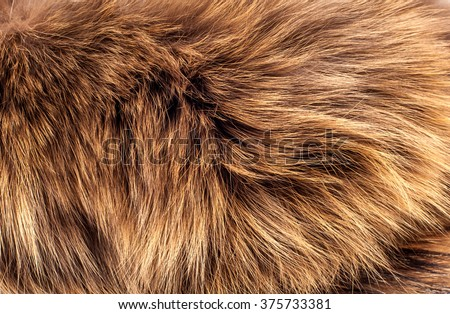 fur, wool Royalty-Free Stock Photo #375733381
