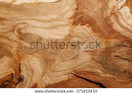 Background texture of natural wood. Close up cross section of tree trunk. old tree stump texture background #375810610