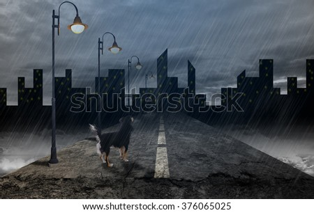 Scared abandoned dog under rain looking away while standing on empty road at night