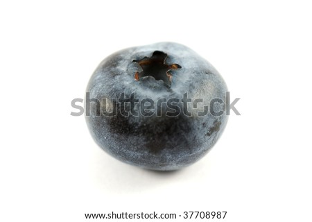a single blueberry on a white background #37708987