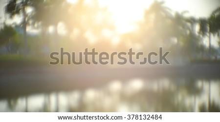 park (lens flare) #378132484