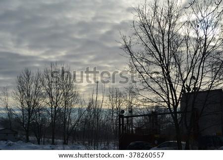 The February sky #378260557