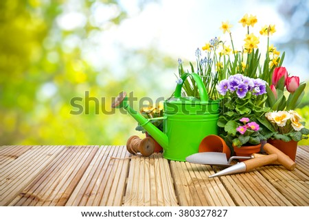 Gardening tools and flowers on the terrace in the garden #380327827