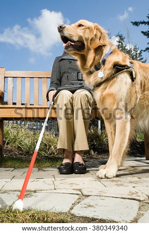 Blind woman and a guide dog #380349340