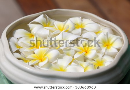 white plumeria flowers floating on the water in the basin. #380668963