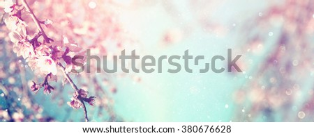 Abstract blurred website banner background of of spring white cherry blossoms tree. selective focus. vintage filtered with glitter overlay #380676628