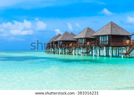 tropical beach in Maldives with few palm trees and blue lagoon #381016231