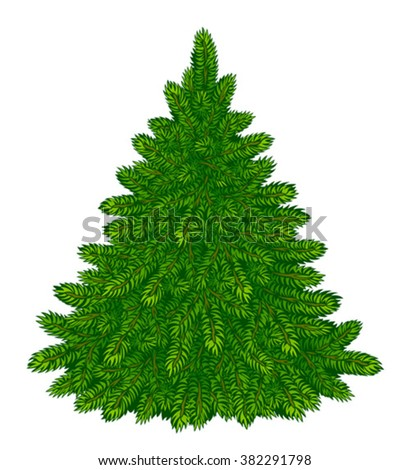 Fir-tree #382291798