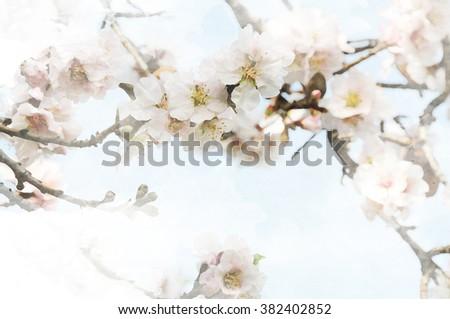 Spring background #382402852