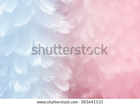 Fluffy elegant serenity blue feather on rose quartz pink soft focused background - Fashion Color Trends Spring Summer 2016 and Color of the Year #383641531