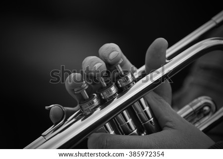 Hands of the man playing the trumpet #385972354