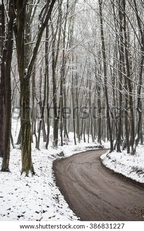 Winter forest road with dark trees, ground covered with snow #386831227