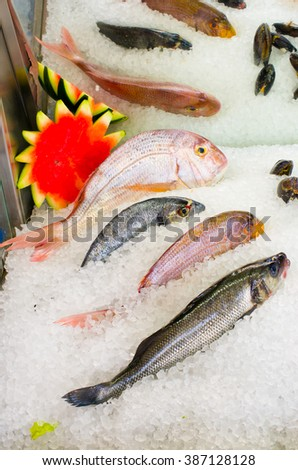Abundance of seafood on the ice #387128128