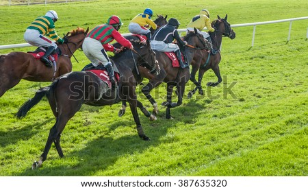 Race horses sprinting words the finish line Royalty-Free Stock Photo #387635320