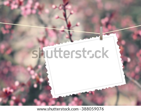 Close-up of one hanged postcard with peg on pink flowers out of focus background