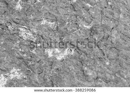 Brown rock texture. Close-up #388259086