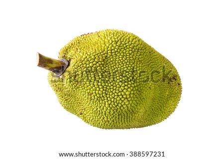 Jackfruit, ripe fruit on a white background. #388597231