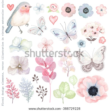 Collection vector flowers, Robin bird, butterflies, branches and leaves in vintage watercolor style.