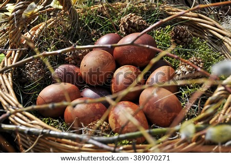 natural brown Easter eggs nature #389070271