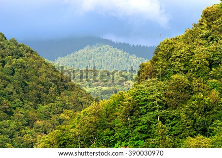 View of mountain forest landscape under sunlight in the middle of the summer with heavy blue sky as a background. Green wood mountain forest in clouds scenery. Russia, Sochi