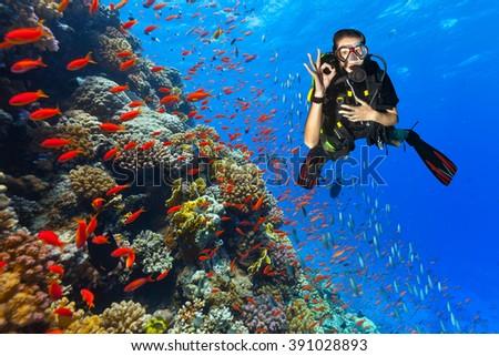Scuba diver explore a coral reef showing ok sign #391028893