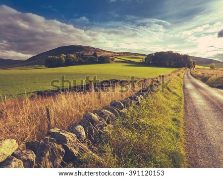 Country Road Or Lane And Dry Stone Wall Through Scottish Rural Lanscape At Dusk #391120153