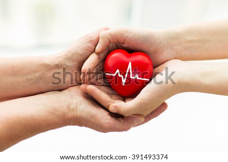 charity, health care, donation and medicine concept - man hand giving red heart with cardiogram to woman Royalty-Free Stock Photo #391493374