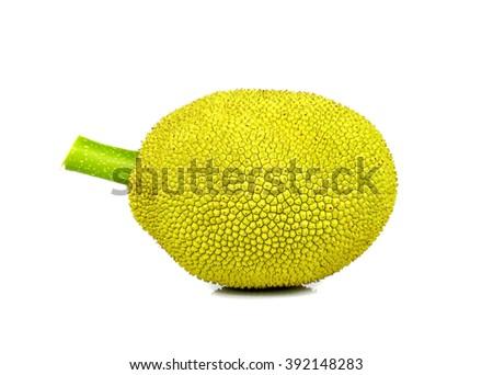 Young jack-fruit isolated on white background. #392148283