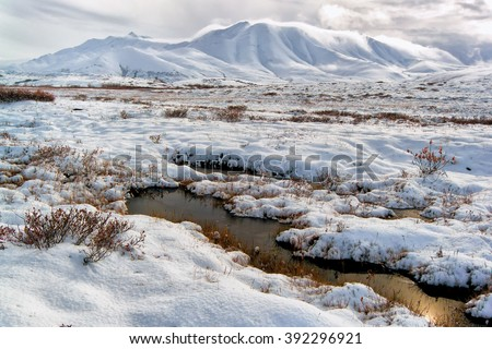 Pools of tundra water just beginning to freeze for the winter in the Alaskan Arctic in a valley in the Brooks Range