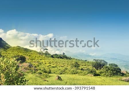 Ethiopia. Rural landscape. Africa #393791548