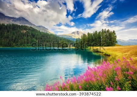 Fantastic view of the azure pond Champfer. Picturesque scene. Location: resort Silvaplana village, district of Maloja in the Swiss canton of Graubunden, Alps. Europe. Artistic picture. Beauty world.