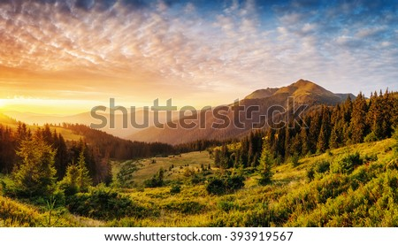Picturesque view of the mountains that glow under sunlight. Dramatic morning  scene. Location place Carpathian national park, Ukraine, Europe. Artistic picture. Beauty world. Warm toning effect. #393919567