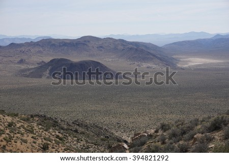 Joshua tree National Park landscape, California #394821292