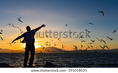 freedom, peace and seagulls Royalty-Free Stock Photo #395018035