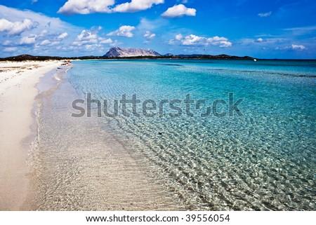 Clear sea and sandy beach La Cinta, Sardinia, Italy #39556054